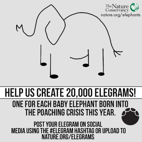 We Want You To Create An Elegram!